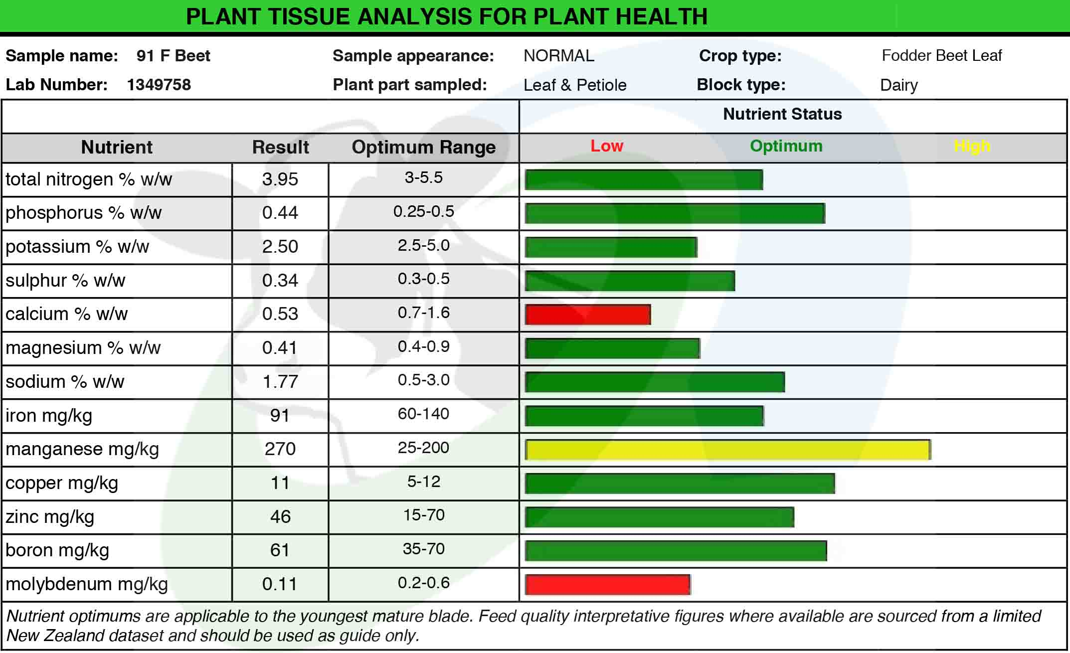 SDF Beet Leaf Analysis3