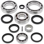 Rear Differential Bearings and Seals Kit Kawasaki KFX700 V-Force 2004-2009