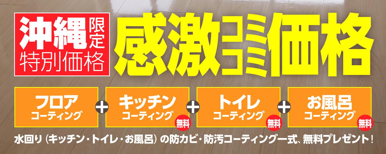 沖縄九州限定価格¥2980/㎡