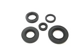 Engine Oil Seals Kit Honda Elsinore CR250 M 1976