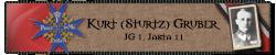 Sturtz_R_Small.png?dl=0