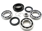 Rear Differential Bearings and Seals Kit TRX400FW Fourtrax Foreman 4x4 2002-2003