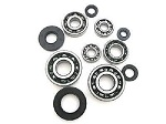 Bottom End Bearings and Seals Kit Honda MT250 1974-1976 Engine
