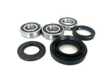 Rear Wheel Bearings and Seals Kit Honda TRX400FW Fourtrax Foreman 4X4 1995-2003