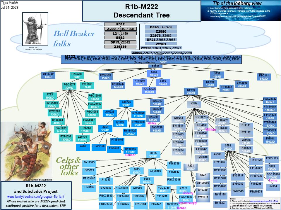 R1b-M222 Descendant Tree