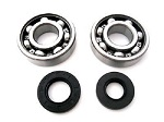 Boss Bearing Y-TRIZ250-MC-3J8-A-2 Main Crankshaft Bearings and Seals Kit Yama...