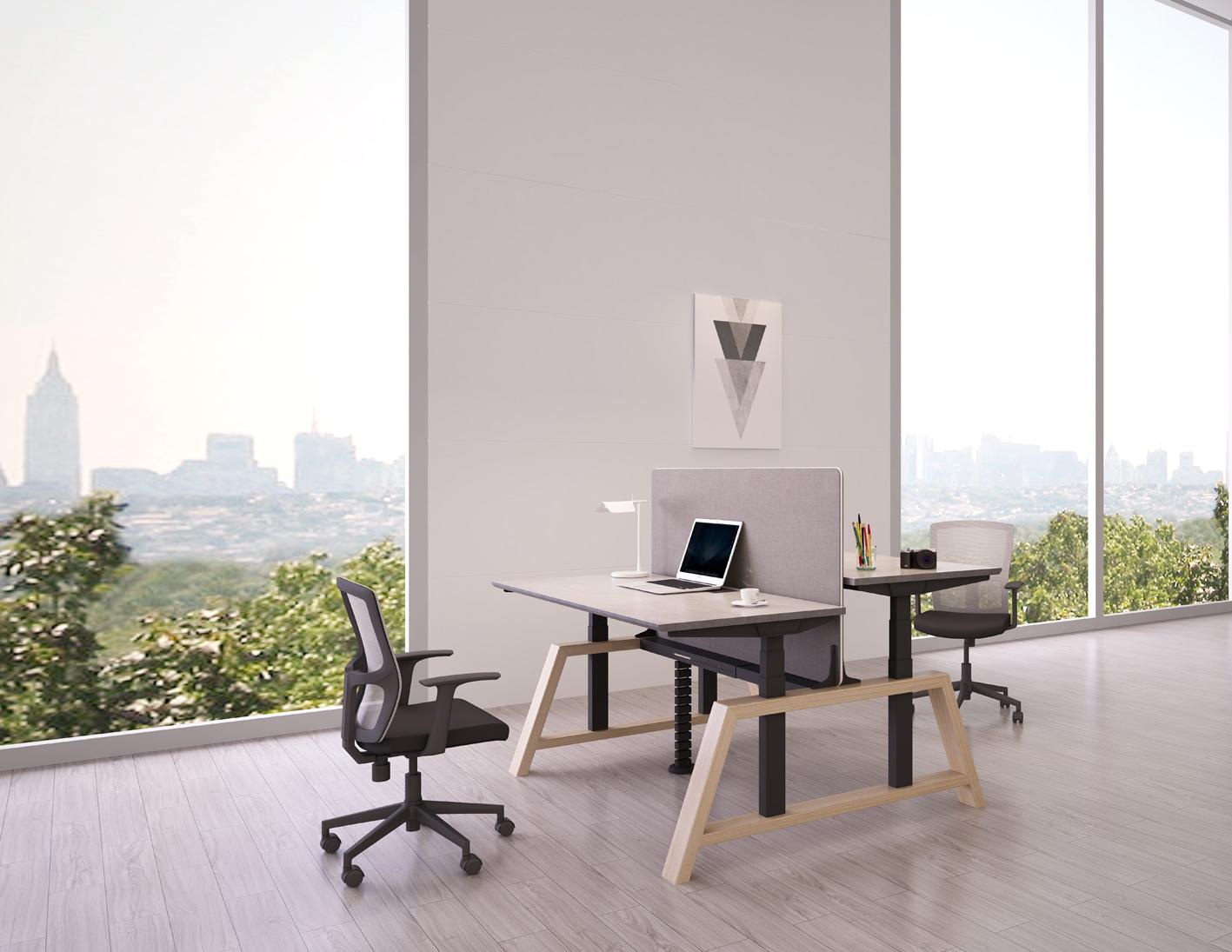 Dubbel Elektrisch Zit-Sta Bureau - OakDesk