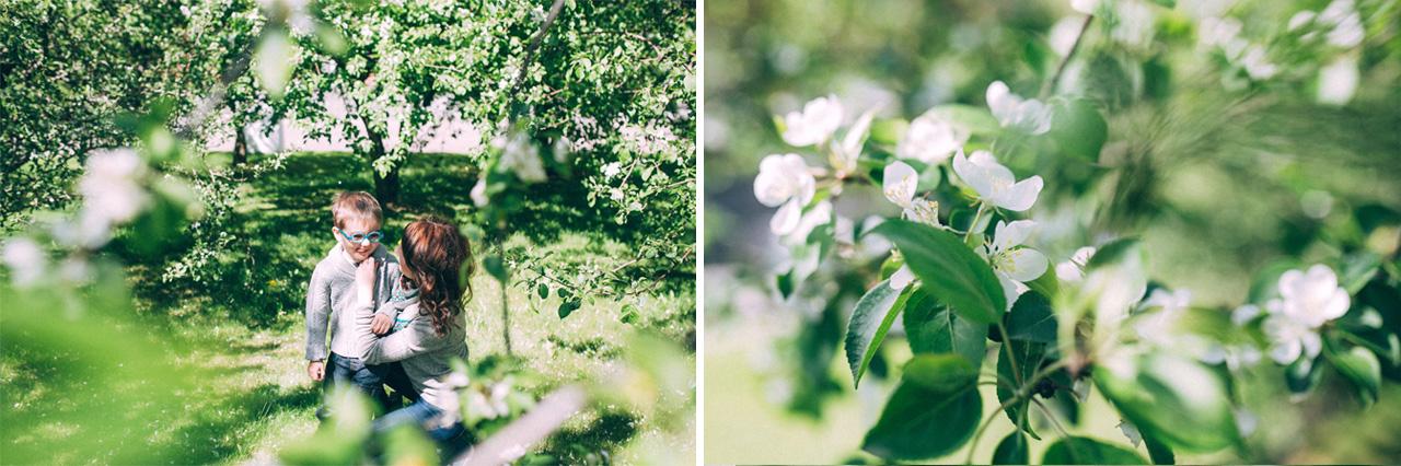 В окружении яблонь - семейная фотосессия в яблонях Северодвинск свадебный фотограф Архангельска