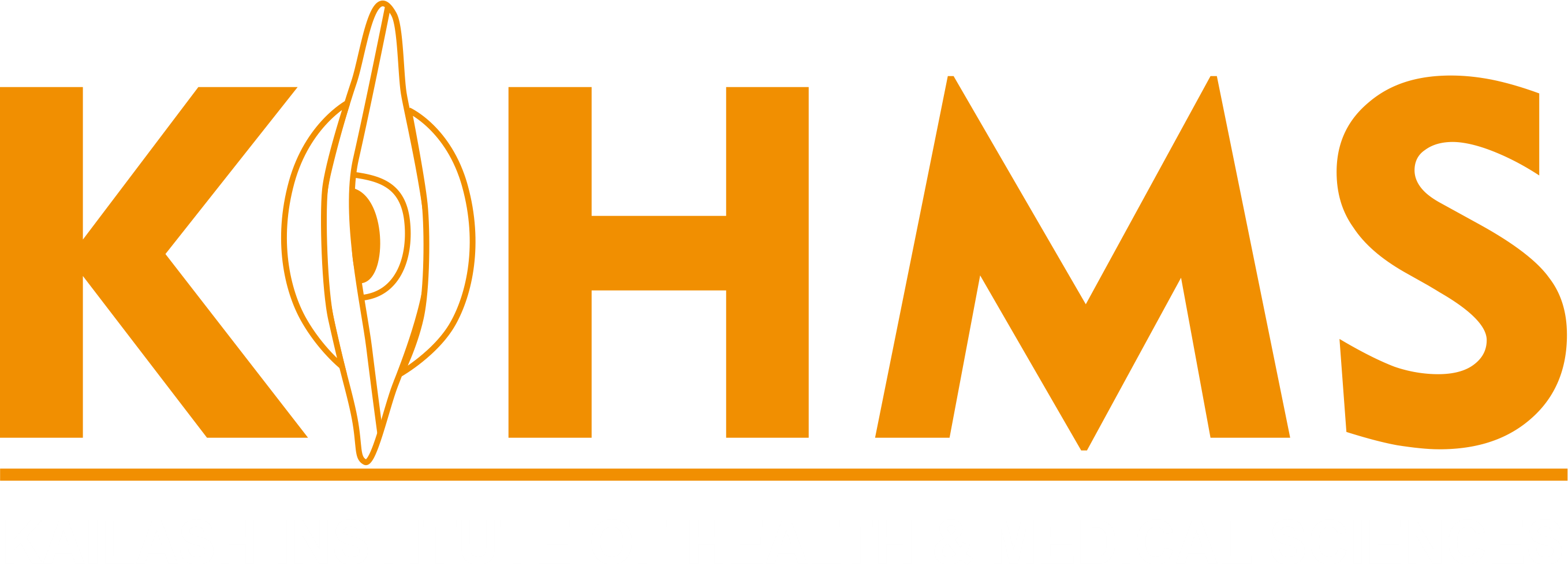 Kailash Institute of Health and Medical Sciences, College of Nursing, Panchkula