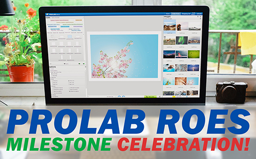 Prolab ROES Promotion