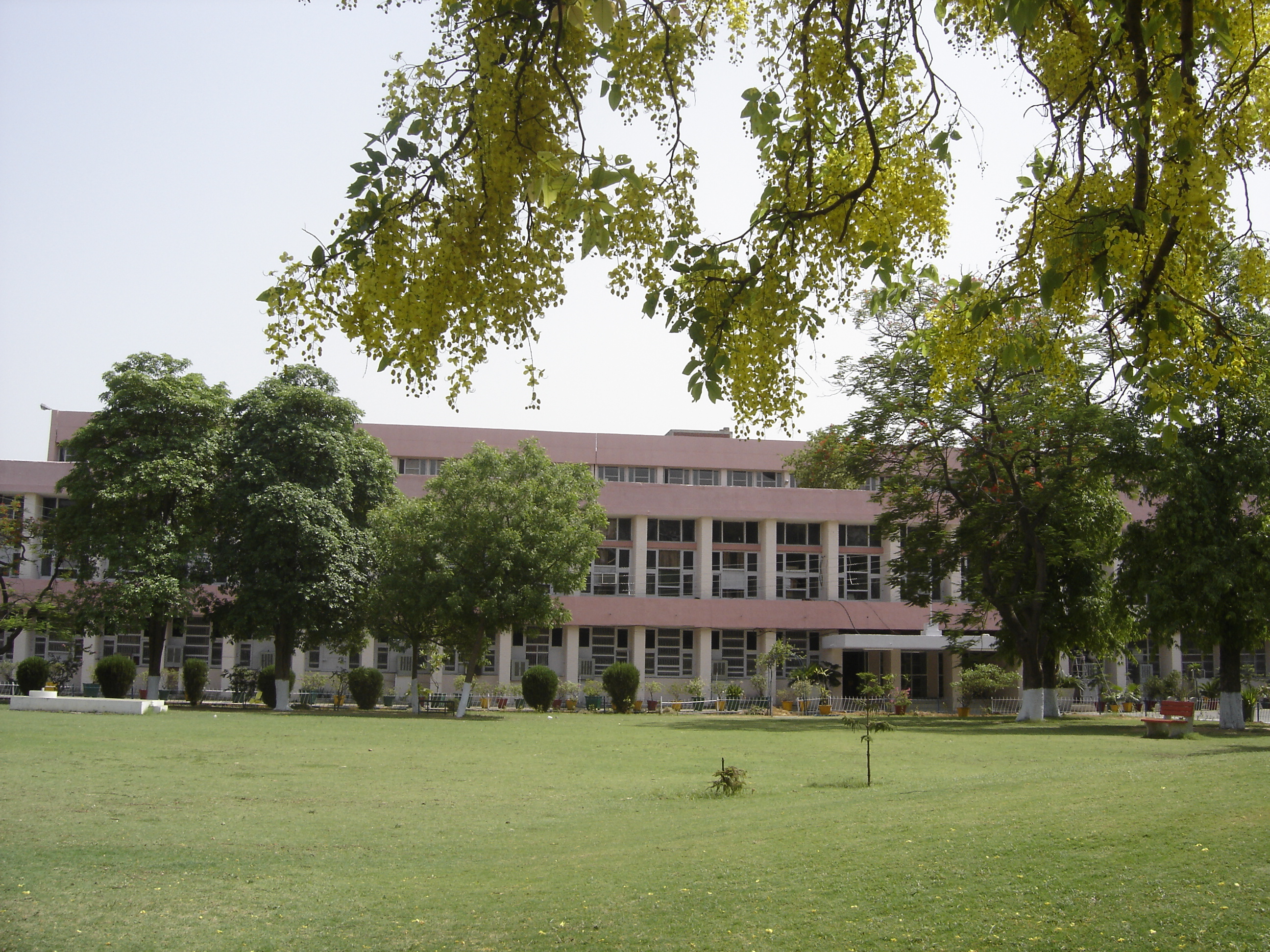 College Of Pharmacy, Pt. B.D. Sharma University Of Health Sciences, Rohtak