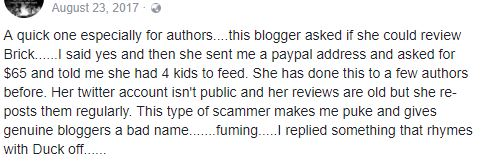 Scam blogger