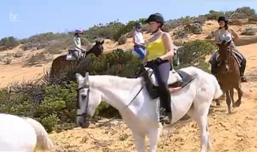 Berühmte Donana-Pferde in Andalusien