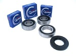 Premium Rear Wheel Bearings and Seals Kit V-Star 1100 XVS1100 2002-2009