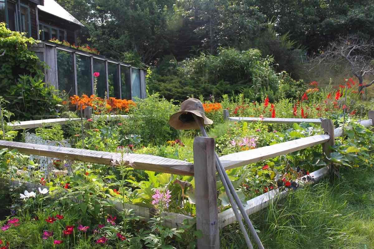 5 First Light Lane Lush Garden