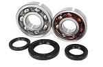 Main Crank Shaft Bearings and Seals Kit Suzuki RMX250 - 24-1091B - Boss Bearing