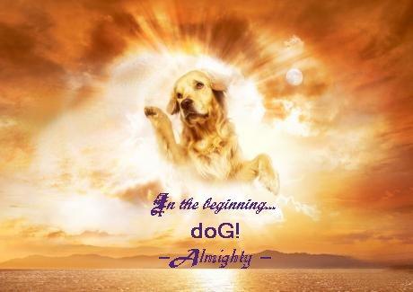 [Image: dog%20Almighty.jpg?dl=1]