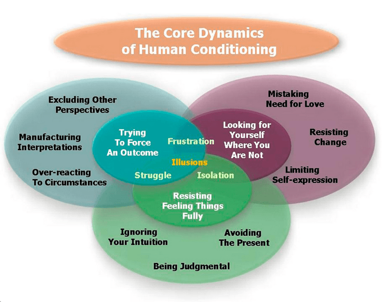 Core Dynamics of Human Conditioning chart