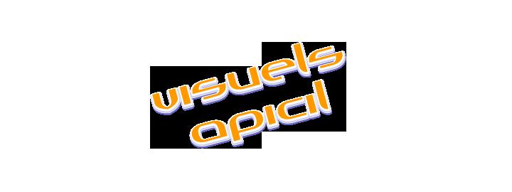 Visuels Apicil