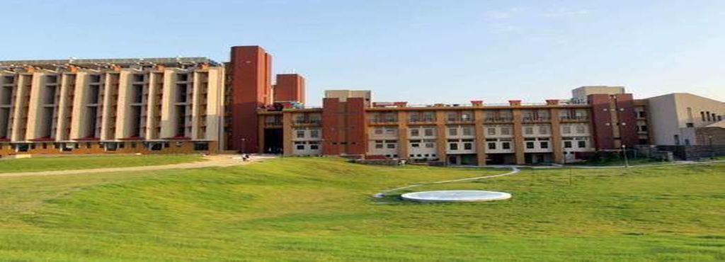NIIT University Image