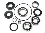 Rear Differential Bearings and Seals Kit LT-Z250 QuadSport 2004-2009