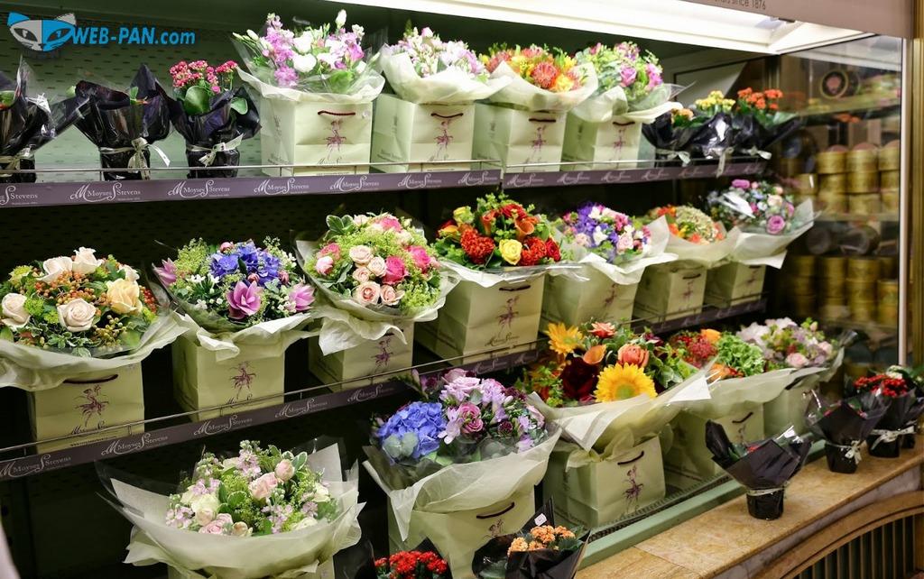Новй сайт под цветочный магазин, работа начинается на этой неделе! Всё шикарно - новые оплаты придут вскоре, как обычно...
