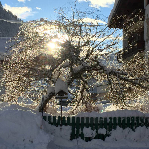 Piz Buin - Garten im Winter