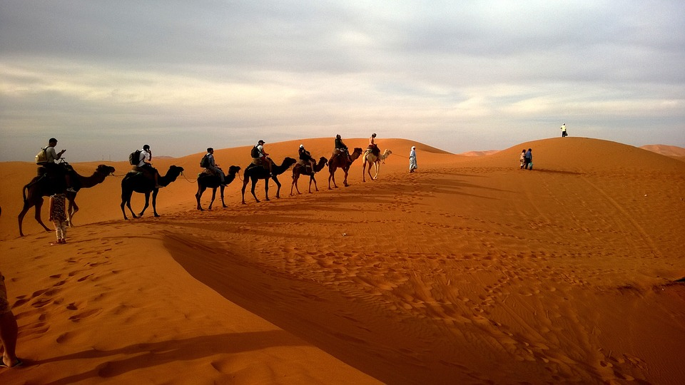 Desert with camel train