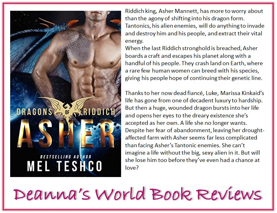 Asher by Mel Teshco blurb