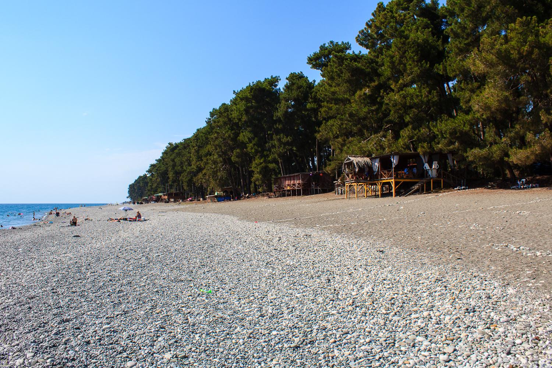 пришла еще песчаные пляжи пицунды фото лучше выбрать