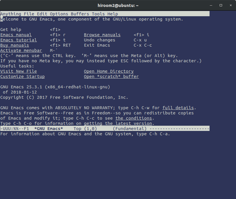 0005_emacs-before-resize.png
