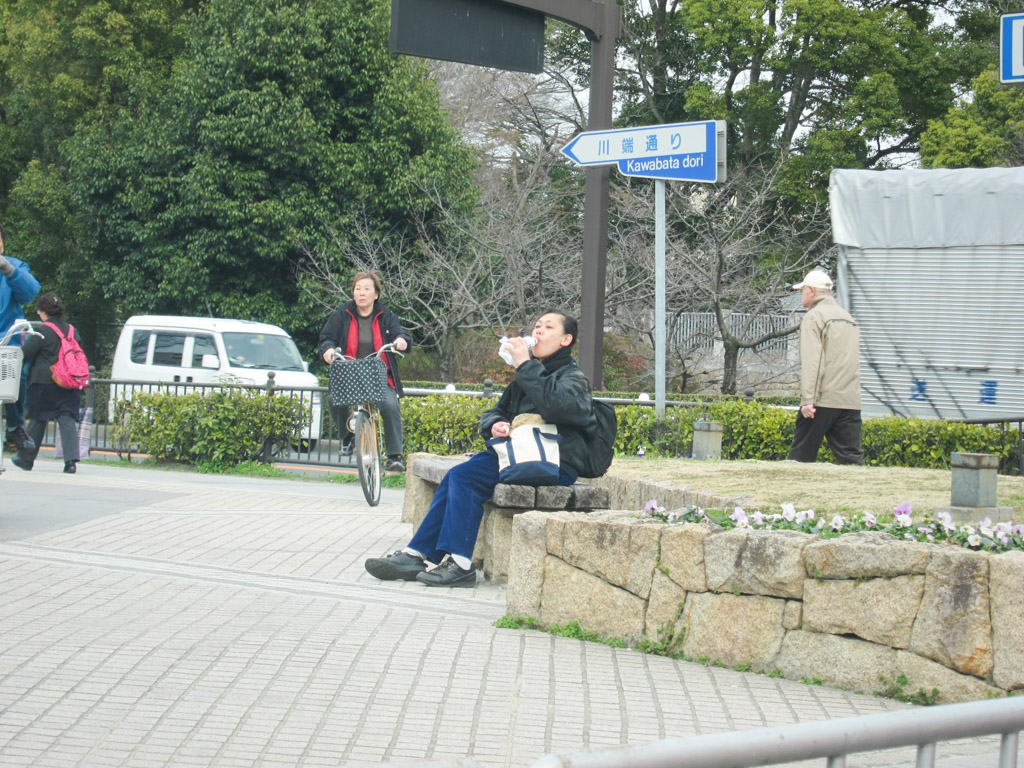 """Как мы """"массово"""" поменяли гражданство на японское"""