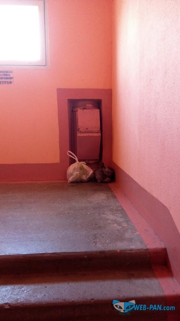 Проблема в санитарном обеспечении, засорился мусоропровод из-за не регулярного вывоза мусора!
