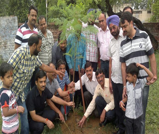 Rehbar Ayurvedic And Unani Tibbi Medical College, Hospital And Research Center, Bhawanigarh