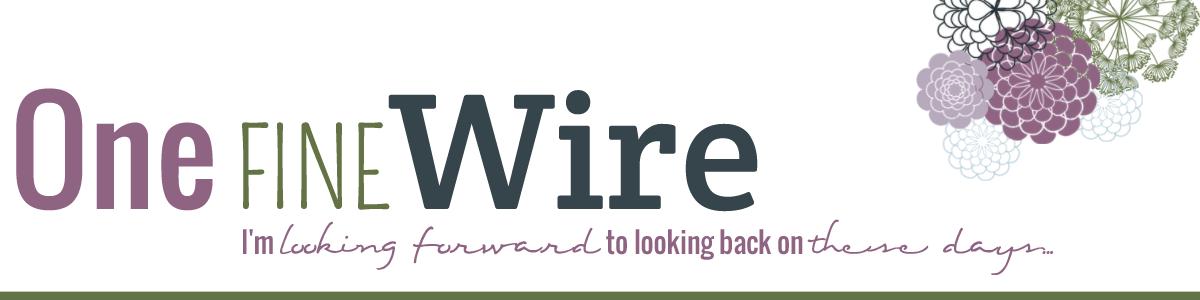 One Fine Wire