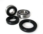 Both Front Wheel Bearings and Seals Kit Kawasaki KFX50 2003-2006