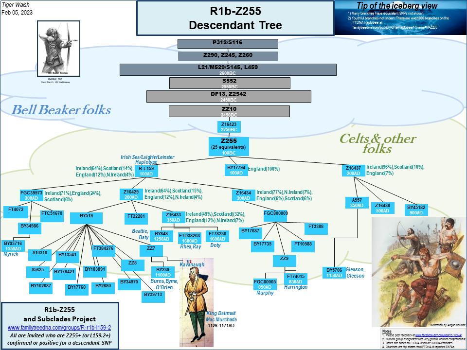 R1b-Z255 Descendant Tree