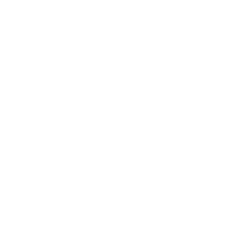 Cements and Liners