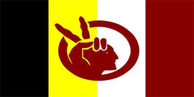 Bandera del Movimiento Indígena Americano