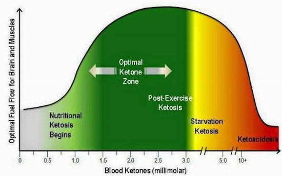 ketosis chart