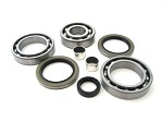 Rear Differential Bearings and Seals Kit Polaris Xpedition 425 2000-2002