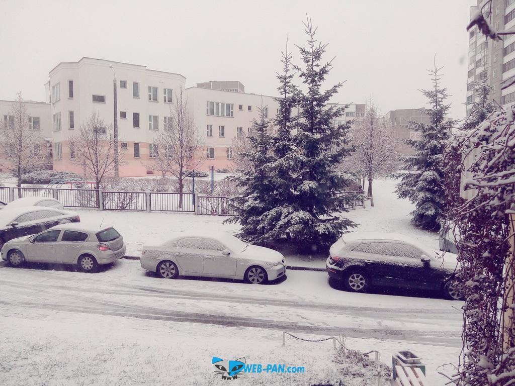 Радость первая снежная буря этого года, отменный беленький снежок на улице!