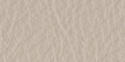 1921515 Stone