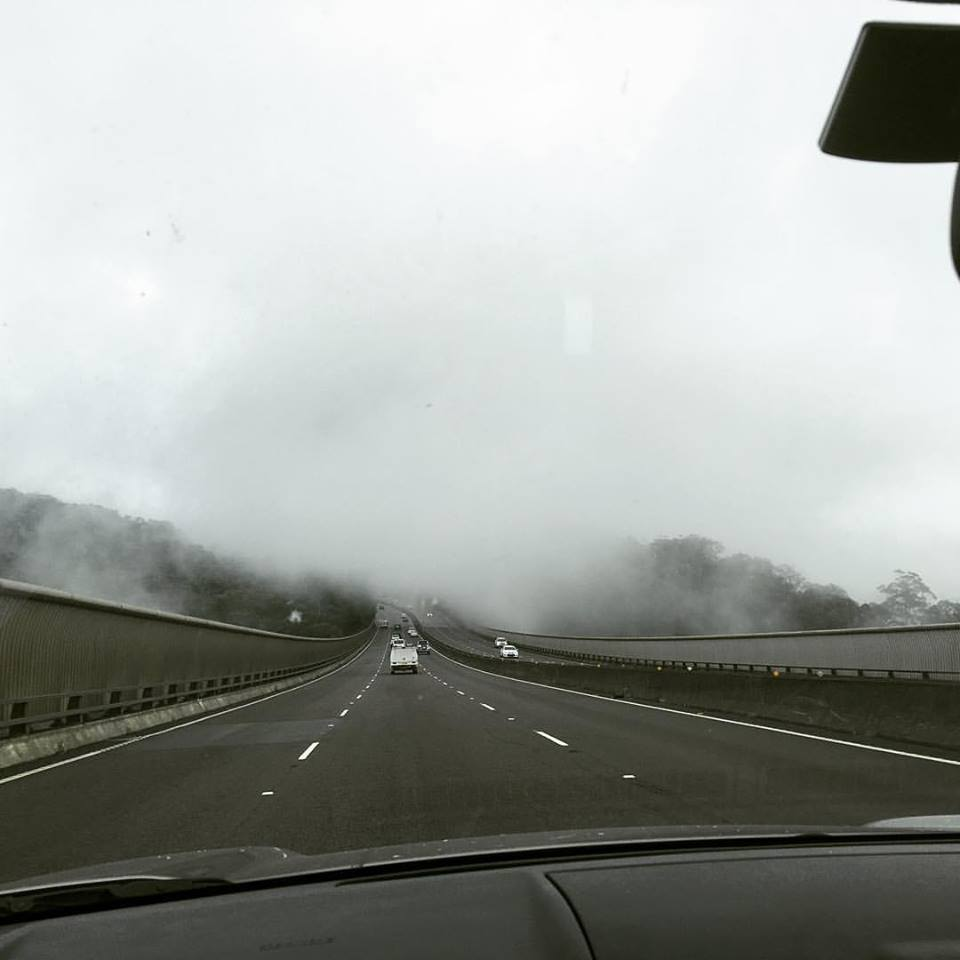 Foggy driving conditions