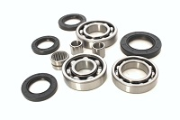 Rear Differential Bearings and Seals Kit Kawasaki KLF400 Bayou 1993 1994 1995