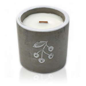 soy wax medium concrete candles