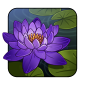 waterlily2.png