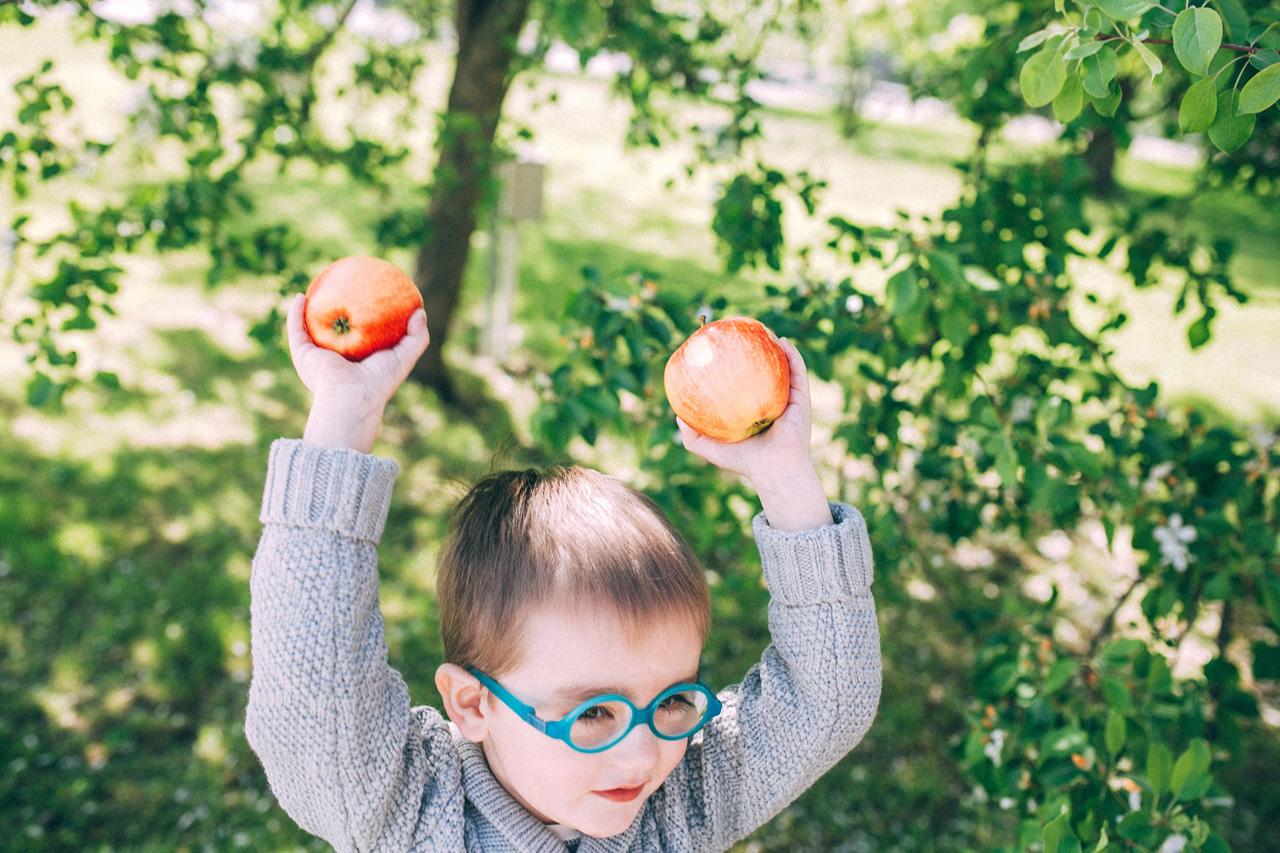 Яблоки в яблонях - семейная фотосессия в яблонях Северодвинск свадебный фотограф Архангельска