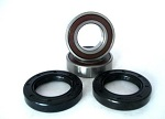 Front Wheel Bearings and Seals Kit Honda CBR954RR 2002-2003