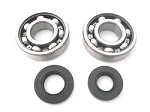 Main Crank Shaft Bearings and Seals Kit Honda MT250 Elsinore 1974-1976